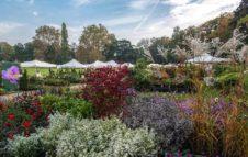 Tre giorni per il giardino: fiori, piante e colori d'autunno al Castello di Masino