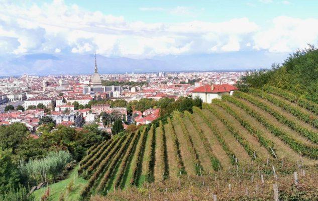 Vendemmia a Torino – Grapes in Town 2020: eventi e degustazioni in giro per la città e sul web
