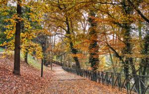 I Sentieri della Collina di Torino: percorsi e passeggiate nella Natura in centro città