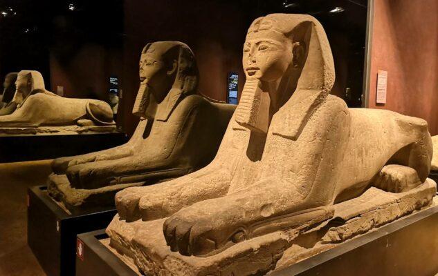 Il Museo Egizio di Torino riapre al pubblico e offre l'ingresso gratuito per 5 giorni