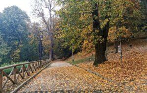 Parchi di Torino: i 10 più belli perdersi nella Natura a pochi passi dalla città