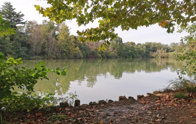 Parco della Mandria laghetti