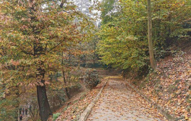 Il Parco Leopardi: una romantica passeggiata sui sentieri della Collina di Torino