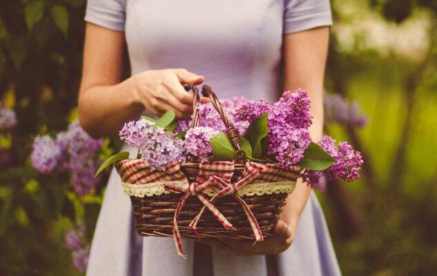 Flor Primavera 2021: Torino si trasforma in un grande giardino