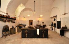 Weekend ai Musei Reali: mostre, workshop all'aria aperta e visite speciali